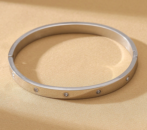 Stainless Steel + Diamonds Bangle