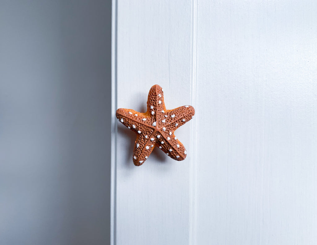 Starfish Door / Drawer Knob