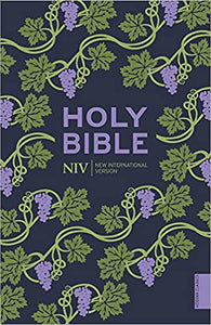 NIV Paperback Bible Purple Print
