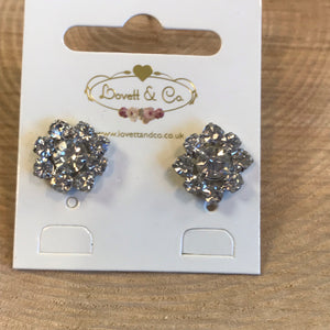 Earrings (5901681229984)