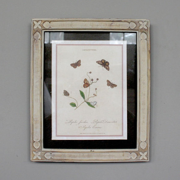 Butterfly Frame (5813806301344)