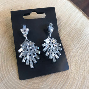 Earrings (5901455753376)