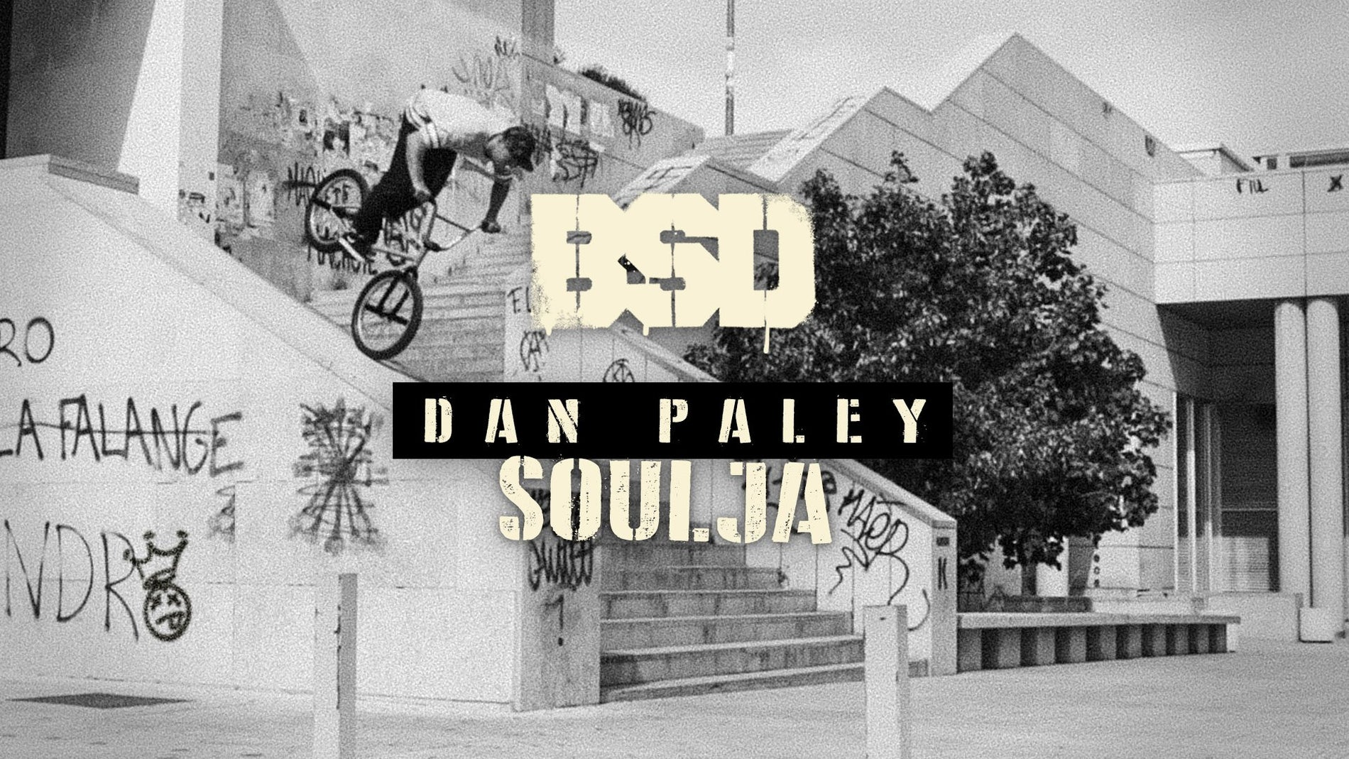 DAN PALEY SOULJA VIDEO