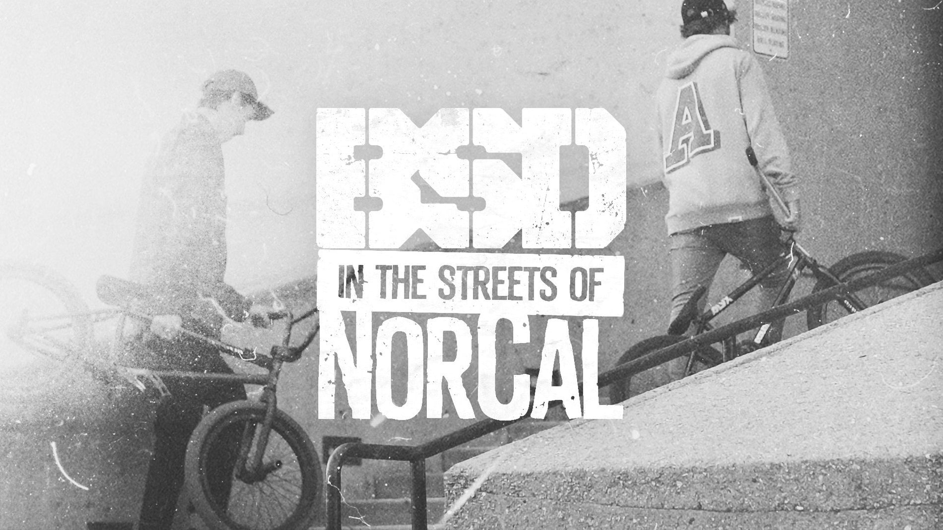 BSD IN THE STREETS OF NORCAL…