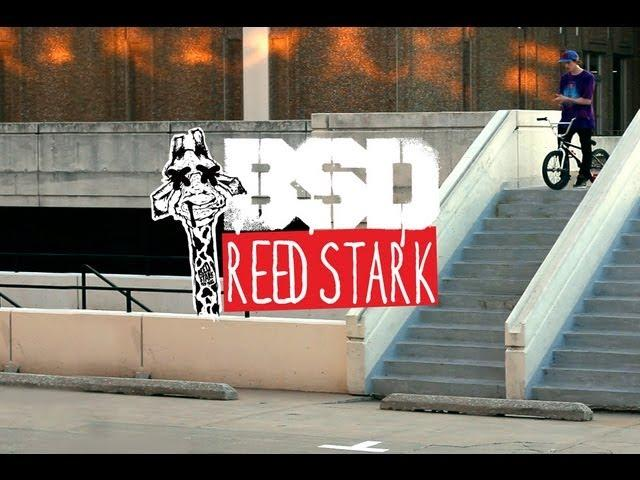 Reed Stark Giraffic Bar promo