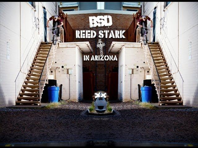 Reed Stark in Arizona