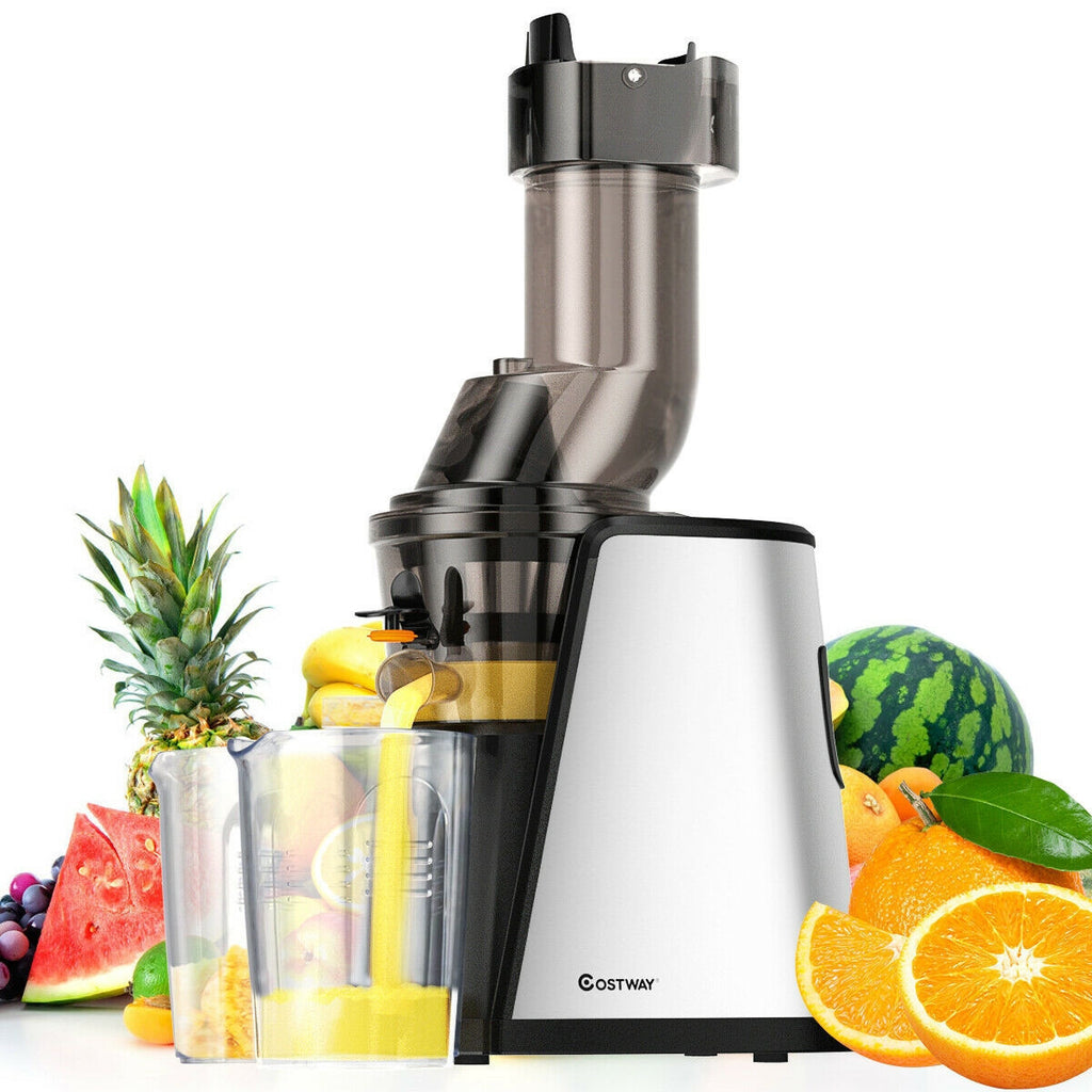 Slow Stainless Steel Wide Chute Masticating Juicer Cold Press Extractor
