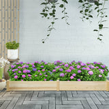 Raised Flowers Vegetables Garden Wooden Planter Box