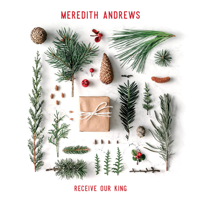 Meredith Andrews - Recieve Our King Cover