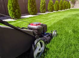 Lawns Mowing