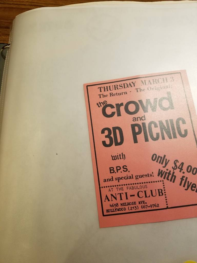 $10 PUNK FLYER - CROWD 3D PICNIC
