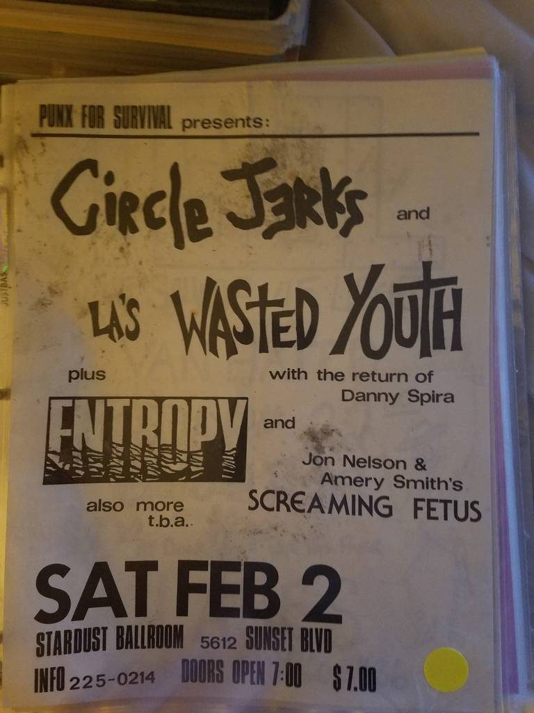 $15 PUNK FLYER CIRCLE JERKS WASTED YOUTH
