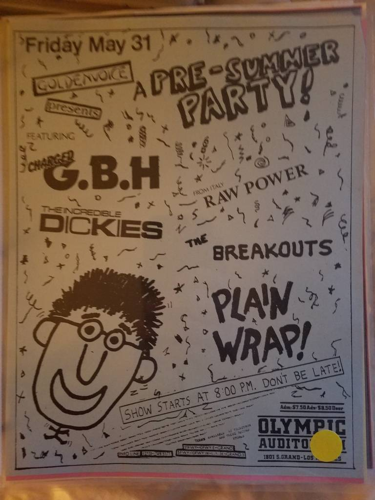 $15 PUNK FLYER GBH THE DICKIES RAW POWER