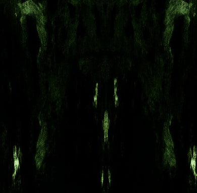 Impetuous Ritual ‎- Unholy Congregation Of Hypocritical Ambivalence NEW METAL CD