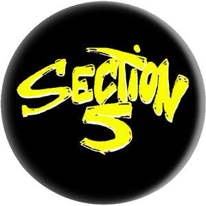 SECTION 5 button