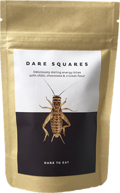 Dare Squares Energy Bites Crickets - NordicExpatShop