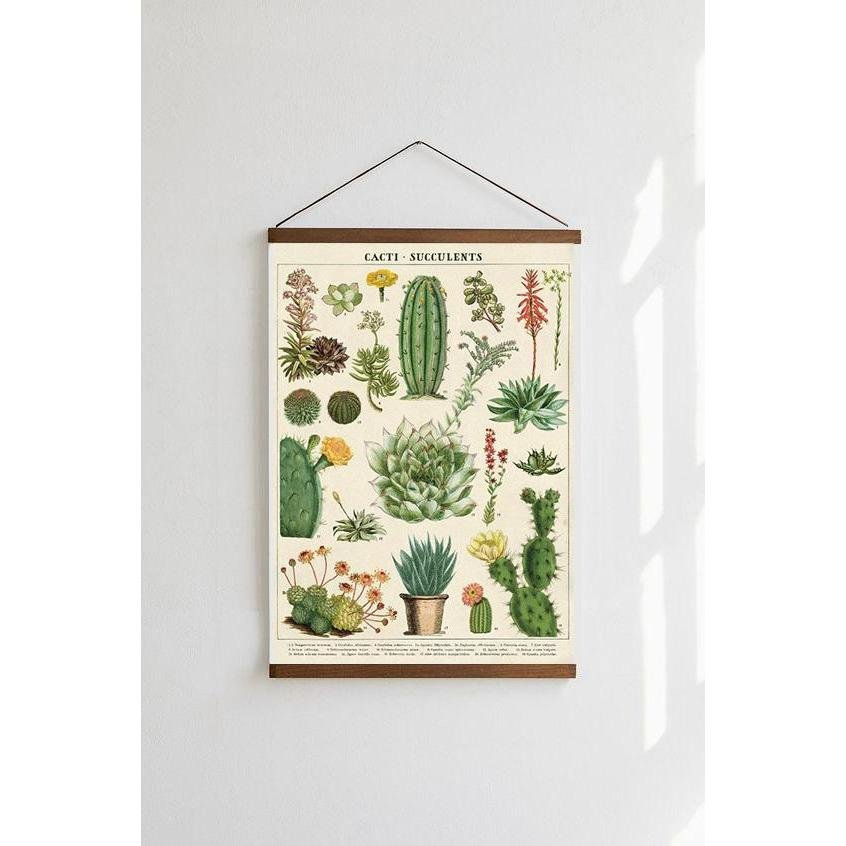 Cacti & Succulents Cavallini Poster - Intrigue Ink Visit Bozeman, Unique Shopping Boutique in Montana, Work from Home Clothes for Women