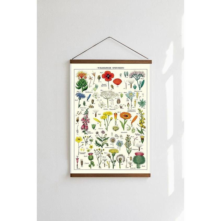 Wildflowers Species Chart Cavallini Poster - Intrigue Ink Visit Bozeman, Unique Shopping Boutique in Montana, Work from Home Clothes for Women