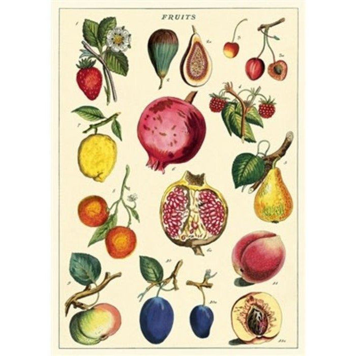 Fruits Cavallini Poster - Intrigue Ink Bozeman Boutique