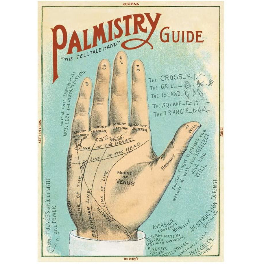 Palmistry Cavallini Poster - Intrigue Ink Bozeman Boutique