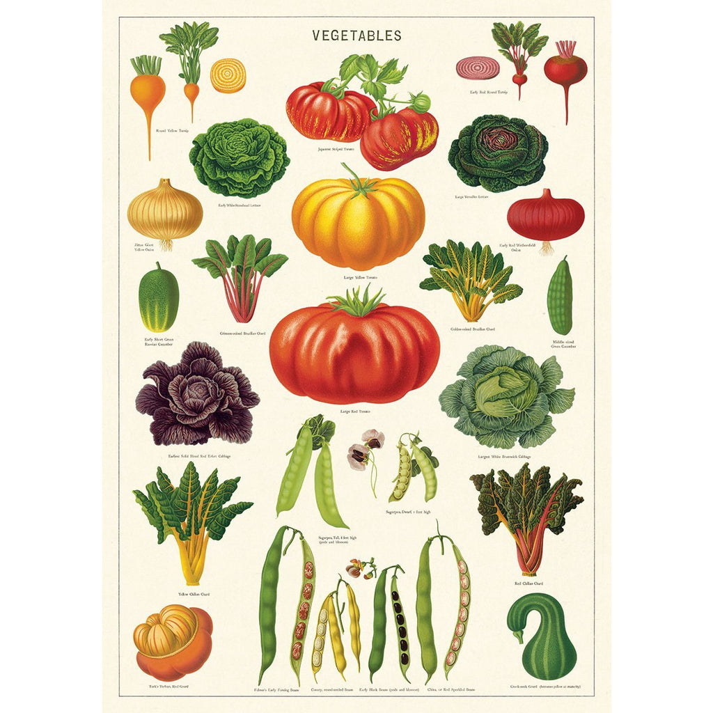 Vegetables Cavallini Poster - Intrigue Ink Bozeman Boutique