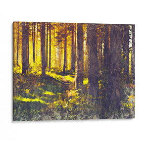 Autumn Forest Trees