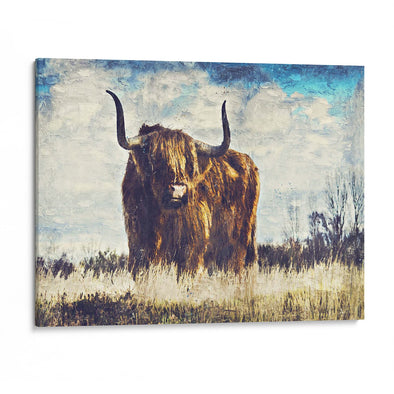 Highland Cattle I