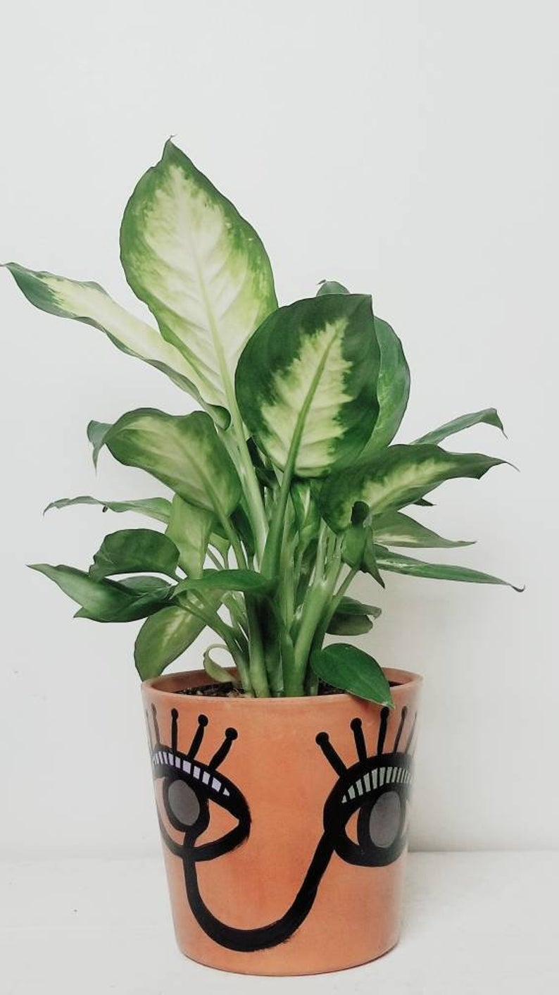 MURSI Collection- Face Print - Terra Cotta Plant Pot