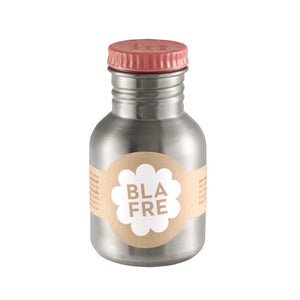 300ml Steel Water Drinking Bottle by Blafre - A Fly Went By