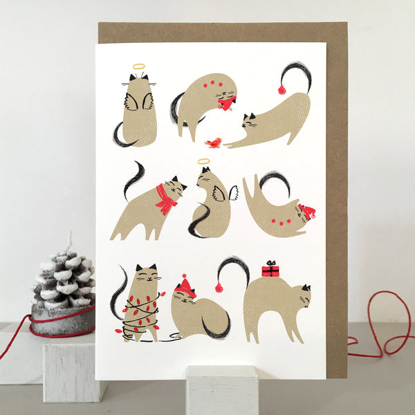 Gorgeous Set of 5 Christmas Cards by Purpose and Worth Etc - A Fly Went By