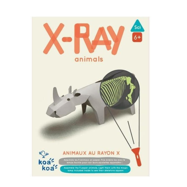 Koa Koa X-Ray Animals Activity Kit