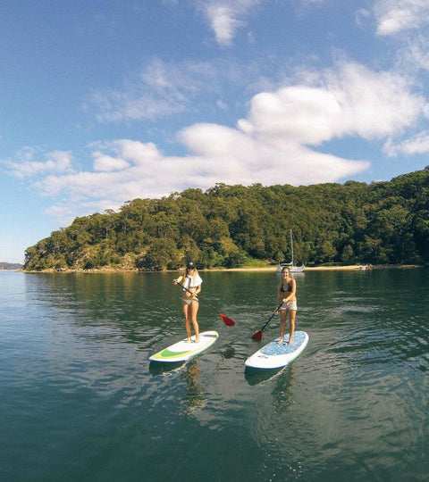 Best Places To Paddle Board in Sydney