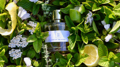 Parterre Fragrances