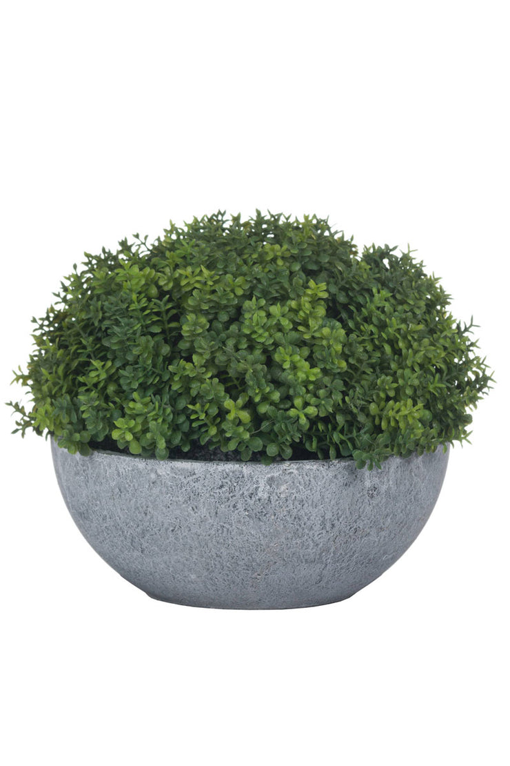 Small Artificial Hebe Globe Pot