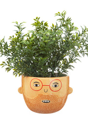 Sass & Belle Ross Mini Planter