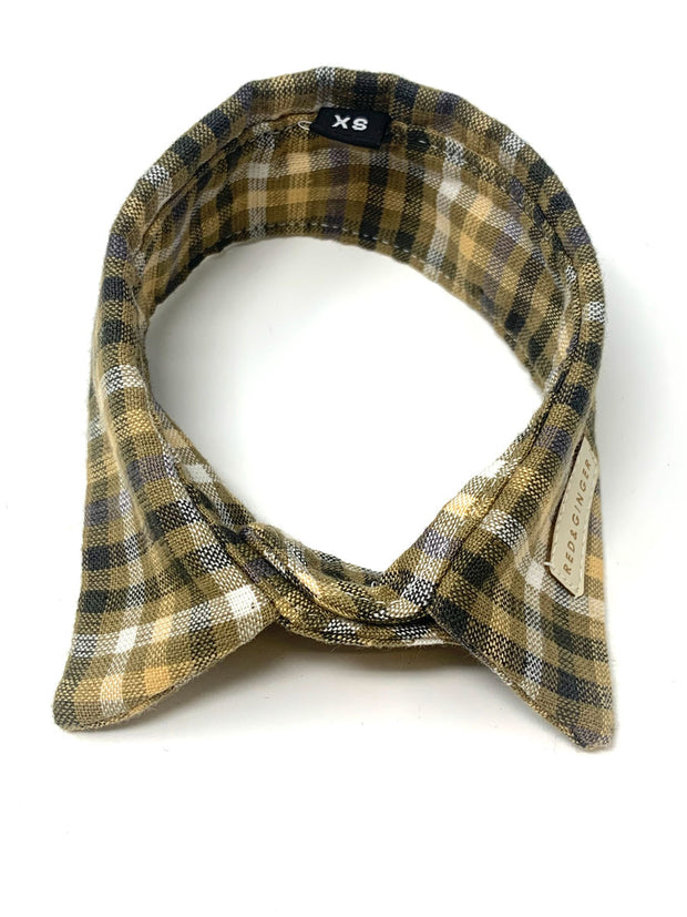 Yellow Check Dogs Shirt Collar