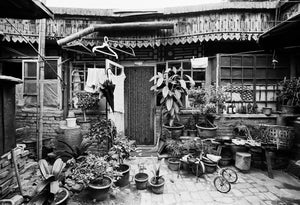 Plentiful Hutong