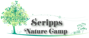Scripps Nature Camp