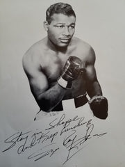 Sugar Ray Robinson training worn boxing gloves - Formula 1 Memorabilia