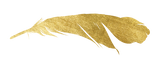 Gold Foil Feather | Kaia Ra | The Sophia Code