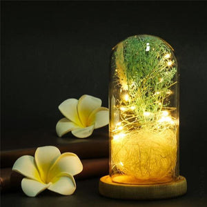 Enchanted Rose In Glass Dome With Wooden Base - A Perfect Gift - Green - Led Lamps 3D Led Moon Light (Touch) Oto Enchanted Rose Glass Dome