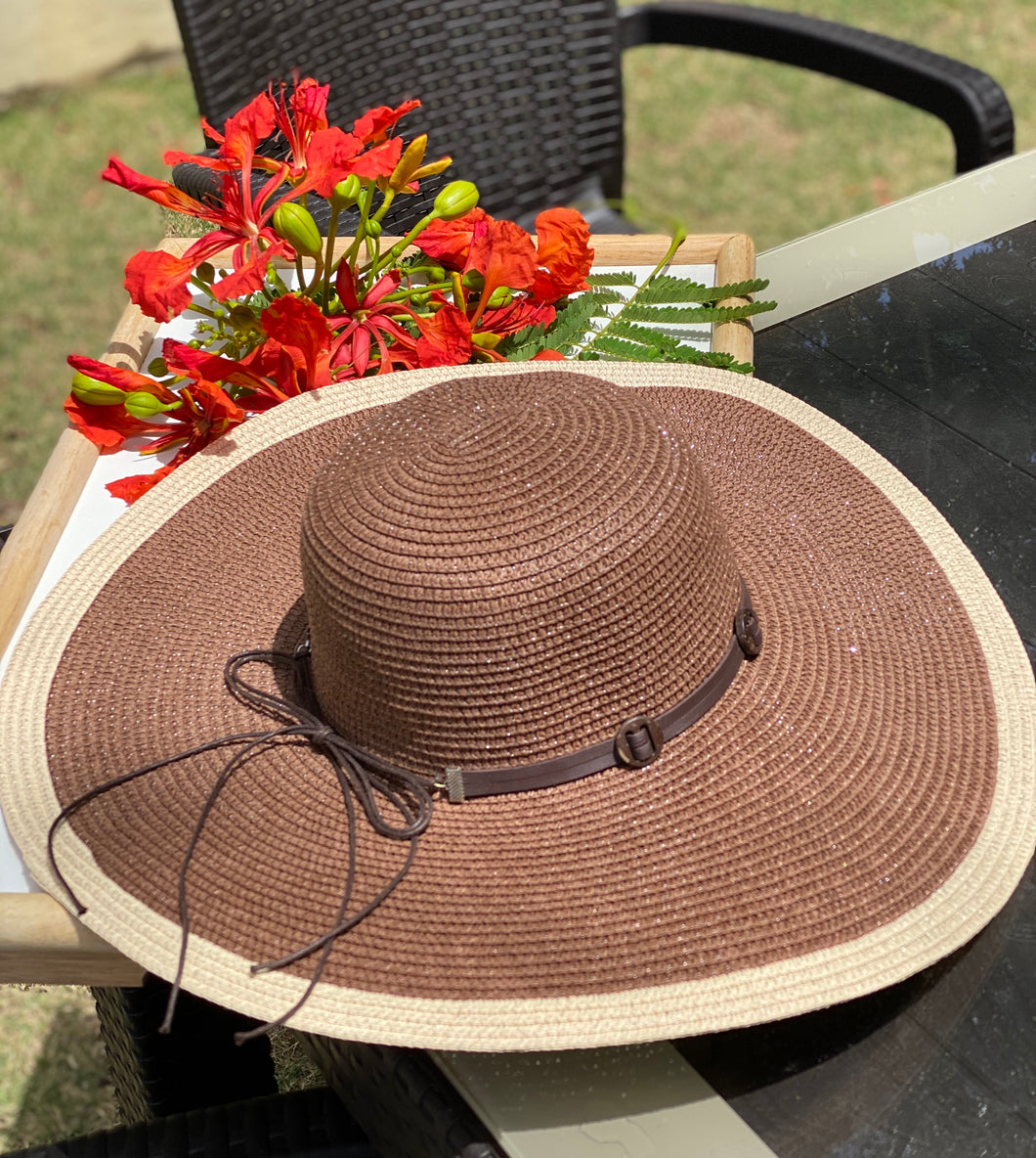 Straw Brown Hat