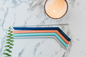 "The Lake House - Four 9.5"" Angled Silicone Drinking Straws with Cleaning Brush"