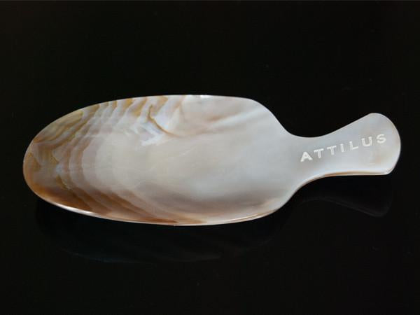 Mother of Pearl Dish