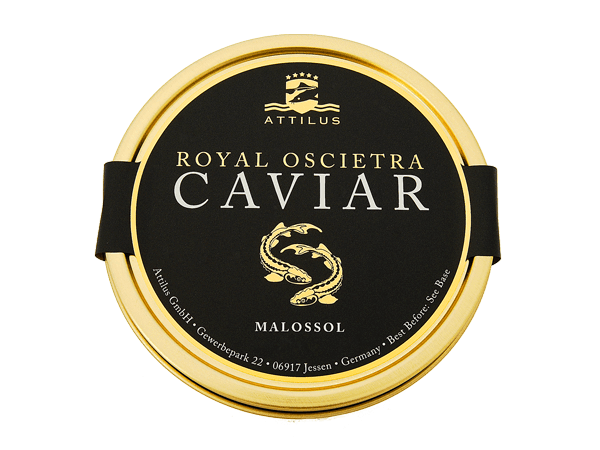 CAVIAR OSCIÈTRE ROYAL