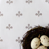 Amalfi Swish Fabric - Chateaux