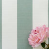 Awning Stripe fabric eucalyptus green