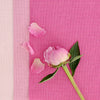Perfectly Plain pink mix cotton linen fabric