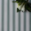 Regatta Stripe cotton linen fabric Eucalyptus green