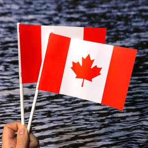 Canada Paper Stick Flags